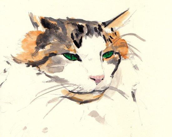 watercolour cat Art Print