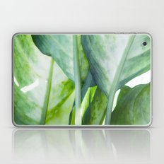 tropic abstract  Laptop & iPad Skin