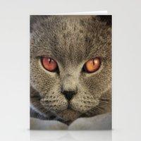 Tomcat Diesel Stationery Cards