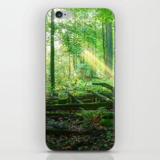 Devil's Lake State Park iPhone & iPod Skin