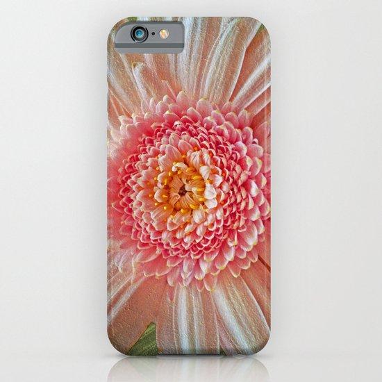 Pink Gerbera Textured iPhone & iPod Case