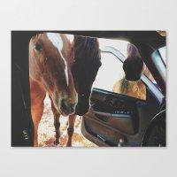 Car Horses Canvas Print