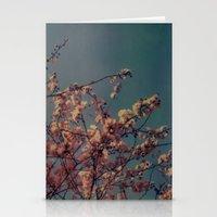 Cherry Blossoms, Polaroi… Stationery Cards