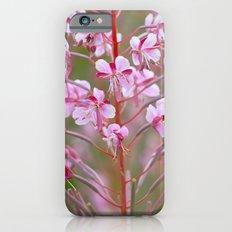 Fireweed 3990 iPhone 6 Slim Case