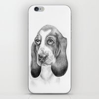 Basset Hound (dog Print) iPhone & iPod Skin