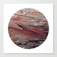 Planetary Bodies - Bark Canvas Print