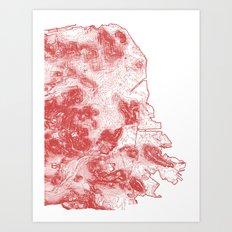 San Francisco Topography  Art Print