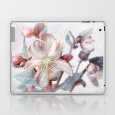 winter blossom Laptop & iPad Skin