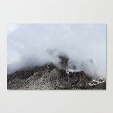 Untitled IV Canvas Print
