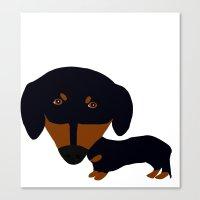 Dachshund (black and tan) Canvas Print