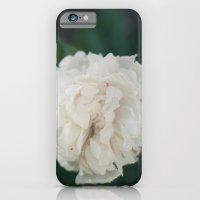 iPhone & iPod Case featuring Ruffles by Crimson Chickadee
