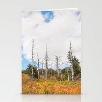 Trees in Mt. Rogers, Virginia Stationery Cards
