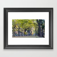 Central Park Fall Series 8 Framed Art Print