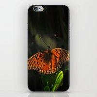Shaded Fritillary Butterfly iPhone & iPod Skin