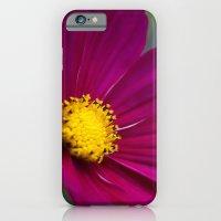 Cosmo iPhone 6 Slim Case