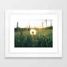 Don't give up hope. Framed Art Print
