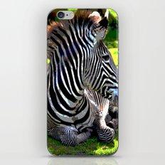 ZeebieJeebie iPhone & iPod Skin