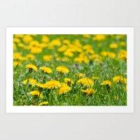 Flower_Feild Art Print