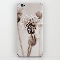 Cirsium 4009 iPhone & iPod Skin