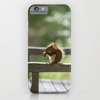 Red Squirrel Snack Time iPhone 6 Slim Case