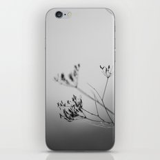 autumn fog iPhone & iPod Skin