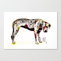 The sadness of streetdogs Canvas Print