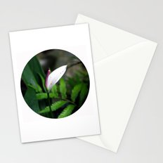 Pink Anthurium Stationery Cards