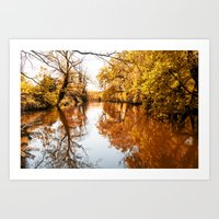 Natural lake in autumn Art Print