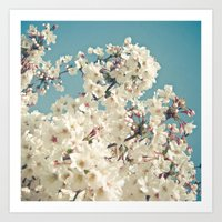 Buds in May Art Print