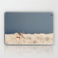 Jackson Hole Deer Laptop & iPad Skin