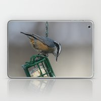Red-breasted Nuthatch Laptop & iPad Skin