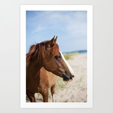 Horse ii Art Print
