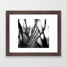 Owie Framed Art Print