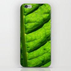 green leaf iPhone & iPod Skin