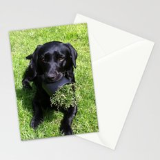 When Life Gives You Flowerpots Stationery Cards