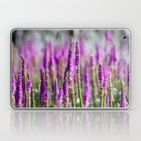 Salvia Laptop & iPad Skin