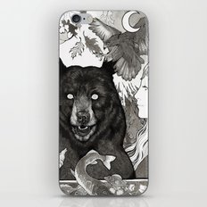 Bear, wolf, pike and falcon iPhone & iPod Skin