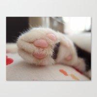 Kitty Paw Canvas Print