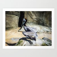 Flapping Bird Art Print
