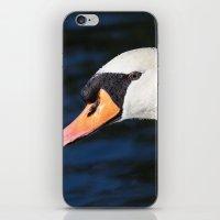 Swan Water Droplets  iPhone & iPod Skin