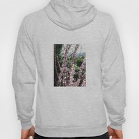 Nature rises Hoody