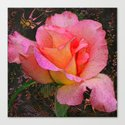 Rose on Black Canvas Print