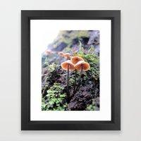 Rainforest No.2 Framed Art Print