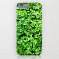 Greenery  iPhone 6 Slim Case