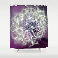 Purple Dandelion Shower Curtain