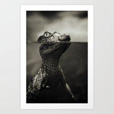 Baby crocodile Art Print