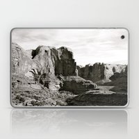 Amasa Back b/w Laptop & iPad Skin