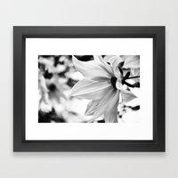 Inflorescence  Framed Art Print