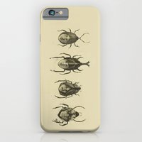 iPhone & iPod Case featuring Basic Beatle Morphology by Alan Bao