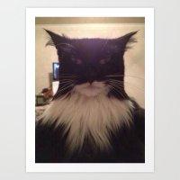 cat lol Art Print